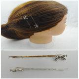 Elegante Form-Haar-Stifte