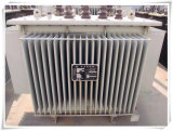 10kv S13 Typ Verteilungs-Leistungstranformator für Stromversorgung