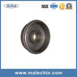 Carcaça feita sob encomenda do ferro da precisão do fabricante de China