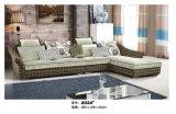 Sofá de la tela de la sala de estar del diseño simple (802B)