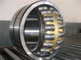 Подшипники ролика двойного рядка поставкы цилиндрические (NN3040K)