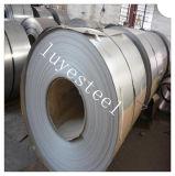 Fuente experta AISI 202 de la hoja de acero inoxidable/de la placa de la bobina
