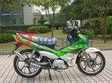 [جينشنغ] درّاجة ناريّة نموذج [جك110-18] [كب]