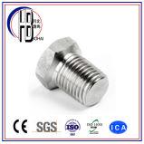 ブッシュを減らすNPT/BSPTに合うA234/A105炭素鋼1000lbs~6000lbsの糸