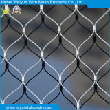 Rete/reticolato della fune metallica dell'acciaio inossidabile per il giardino zoologico Enlcosures