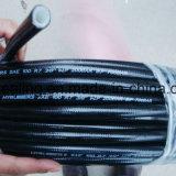 Thermoplastischer Schlauch 2 Schicht-Fabrik produziert