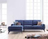 Sofá con estilo de la esquina moderno de la generación joven