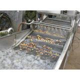 Machine à laver végétale de bulle de souffle et de pouvoir de l'eau, rondelle végétale