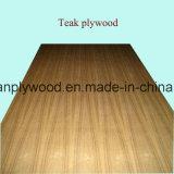 La chapa de la teca/del roble hizo frente a la madera contrachapada de lujo para los muebles