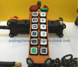 Hydraulic Crawler CranesのためのYuding F24-12s Wireless Remote Control