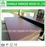 8-21mm Herr Glue Brown Film Faced Plywood