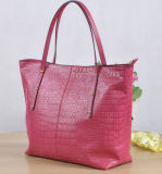 Le sac à main des dames à la mode de vente chaudes (M8204)