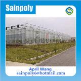 Das preiswerteste Polycarbonat-Gewächshaus für Blumen