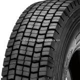 Fornitore del pneumatico del camion di alta qualità con il prezzo basso