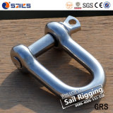 Hot Sale Stainless Steel D Shackle