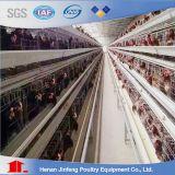 Gabbia automatica del pollo dell'uccello della strumentazione del pollame per il Henhouse della Camera di pollo