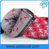 Le crabot respirable chausse les gaines de tricotage d'animal familier de protecteur de patte de doux