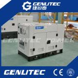 Комплект генератора двигателя 20kVA Yangdong (YSD490D) молчком тепловозный