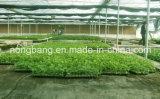 Ткань управлением Weed земледелия сплетенная PP