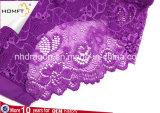 Bragas transparentes atractivas de la ropa interior de las señoras del cordón de los escritos visibles inconsútiles de una sola pieza delanteros viscosos de la parte posterior