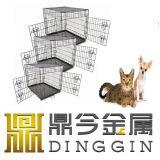 Elemento portante del cane della fabbrica di cena bello a Dalian