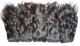 Menselijke Uitbreidingen Hair/Hair/Indisch Maagdelijk Haar