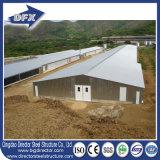 異なったタイプの10000-30000羽の鶏のためのプレハブの養鶏場の家