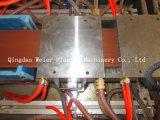 Macchina composita di plastica di legno di profilo Extruder/WPC