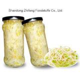 Sprouts enlatados chineses do feijão de soja para exportar