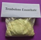 Heiß-Verkauf Steroid-Puder Proviron Massenpuder mit hochwertigem