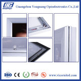 Silberne/schwarze Stärke wasserdichte im Freienled helles Box-YGW42 des Aluminiums 42mm