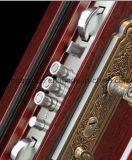 Porte en acier en métal de double de taille garantie extérieure de qualité (W-SD-01)