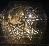 LEIDENE Lichten voor de Decoratie van Kerstmis, heet-Verkoopt het LEIDENE Licht van het Koord