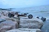 Véhicule électrique électrique rapide de planche à roulettes de la vente 2017 de planche à roulettes de montagne de planche à roulettes neuve complète chaude de panneau