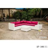 Jogos ao ar livre do sofá, mobília do Rattan do pátio, jogos do sofá do jardim (SF-349)