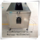 Type de Fermentaion d'ail ferment de machine d'ail de noir/machines noires de fermenteur d'ail