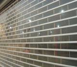 Fashinableデザインの目に見える商業ドア