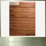 201 304 Farben-überzogene Edelstahl-Platte für gesundheitliche Befestigungen