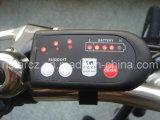 Kits de conversión de 250W 36V 26inch con la rana de batería para cualquier Bicicletas