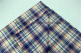 Il filato poco costoso di T/C tinto controlla il tessuto all'ingrosso dei vestiti