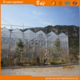 Vegetable Planting를 위한 Output 높은 다중 Span PC Greenhouse