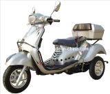 무능한 것을%s 세발자전거, 70/110cc 3 바퀴 기관자전차 (DTR-5)