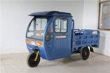 Fabricación eléctrica del triciclo del pasajero de 3 ruedas en China