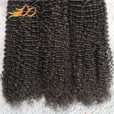 Weave brasileiro do cabelo humano do Virgin Kinky não processado da onda 8A