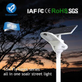 Bluesmart IP65 Bridgelux Integrado LED Solar Street Luminaire