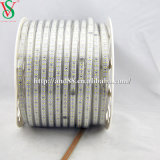 230V SMD 5050 luz flexible tira de LED