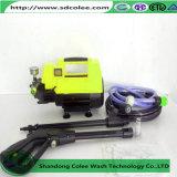 Fleck-Reinigungs-Hilfsmittel für Familien-Gebrauch