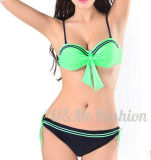 Soem geltende kundenspezifischer Beachwear-reizvolle Dame Bikini Swimsuits