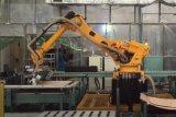 Vollautomatisches Reis-Einsacken-Systems-palettierenzeile mit Roboter Palletizer