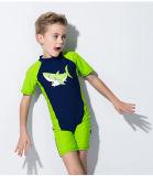 Горячий Swimwear &One-Части мокрой одежды детей сбывания